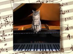 小幡くみこピアノ教室